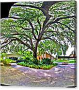 Tree In Church Yard Canvas Print