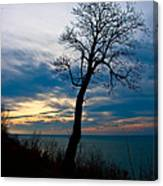 Tree Of Peace Canvas Print