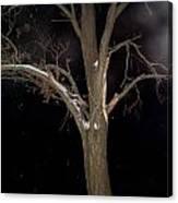 Tree On A Dark Snowy Night Canvas Print