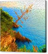 Tree On Rock In Dubrovnik Croatia Canvas Print