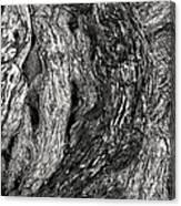Tree Shape Canvas Print