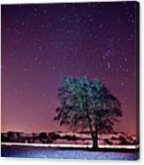 Tree Snow And Stars Canvas Print