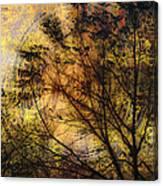 Tree Stamp Canvas Print