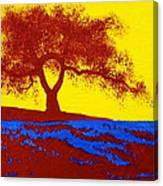 Tree Study 1 Canvas Print
