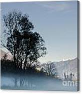 Tree With Fog On Field And Canvas Print