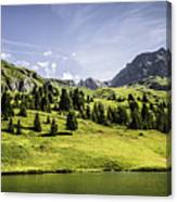 Trees And Lake In Grassy Rural Landscape Canvas Print