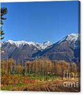 Trees And Mountain Canvas Print