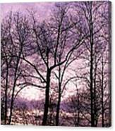 Trees In Glorious Calm Canvas Print