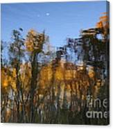 Trees In The Water Canvas Print