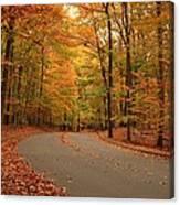 Trees Of Autumn - Holmdel Park Canvas Print