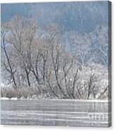 Trees On A Frozen Lake Canvas Print