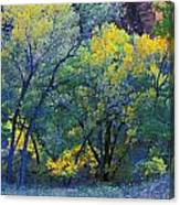 Trees On Edge Of Field In Autumn Canvas Print