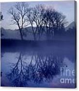 Trees On The Lake Front Canvas Print