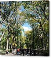 Trees On The Mall In Central Park Canvas Print