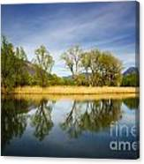 Trees Reflections On The Lake Canvas Print