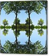 Trees Squared Canvas Print