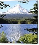 Trillium Lake At Mt. Hood Canvas Print