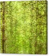 Triptico Pinares Canvas Print