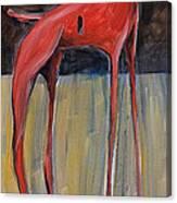 Trojan Dog Canvas Print
