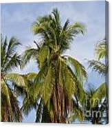 Tropical Cliche Canvas Print