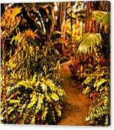 Tropical Forest Canvas Print