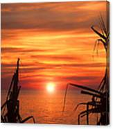 Tropical Sunset V6  Canvas Print