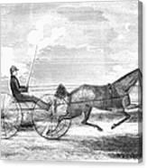 Trotting Horse, 1853 Canvas Print