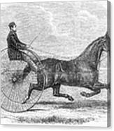 Trotting Horse, 1861 Canvas Print