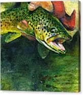 Trout In Hand Canvas Print
