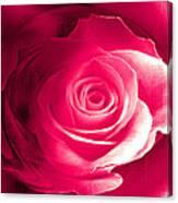 True Love Amore Vero Canvas Print