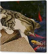 Trying To Catch The Fish Canvas Print