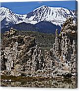 Tufa At Mono Lake California Canvas Print