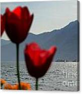 Tulip And Lake Canvas Print