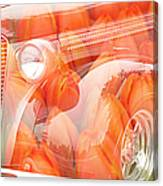 Tulip Car Abstract Canvas Print