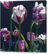 Tulip Springtime Memories Canvas Print
