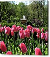 Tulips And Fountain Canvas Print