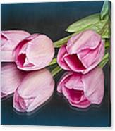 Tulips And Reflections Canvas Print