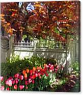 Tulips By Dappled Fence Canvas Print
