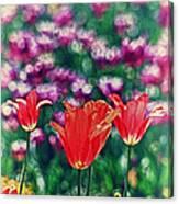 Tulips On Beautiful Bokeh Canvas Print