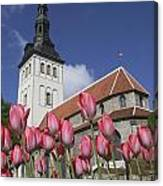 Tulips Outside Niguliste Church Canvas Print
