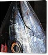 Tuna Head At Fish Market Canvas Print