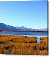 Tundra Lake Canvas Print