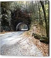 Tunnel Cades Cove Canvas Print