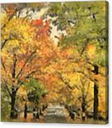 Tunnel Of Color Canvas Print