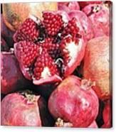 Turkish Pomegrants Canvas Print