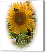 Turn Your Face To The Sun Canvas Print
