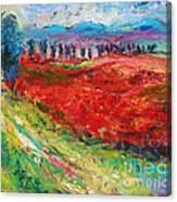 Tuscany Italy Landscape Poppy Field Canvas Print