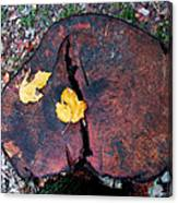 Twin Fallen Leaves Canvas Print