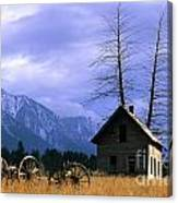 Twin Tree Cabin Canvas Print
