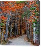 Twisting Road Of Fall Canvas Print